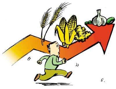 下半年吃粮吃菜吃肉有保障?农业农村部回应农产品价格热点!