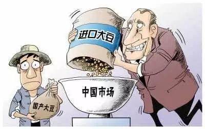 为啥国内农产品价格低,还要花钱从国外进口?这些答案你会满意吗