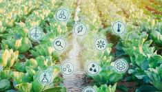 要加快数字技术与农业农村融合,数字化将大大加快农业经济发展