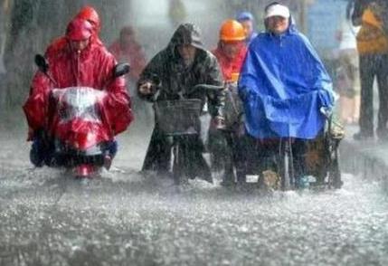 暴雨过后水产养殖防汛救灾如何做?权威解答来了