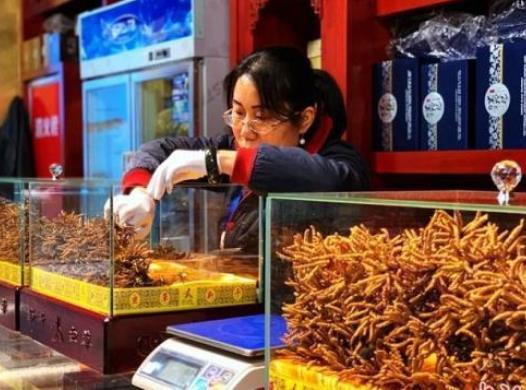 冬虫夏草多少钱一根?怎么区分虫草的好坏?