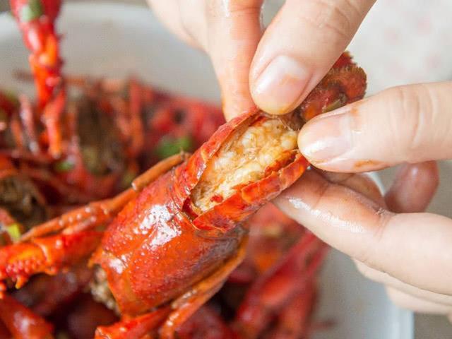 养殖小龙虾一定要注意的事项,毕竟它是入侵物种